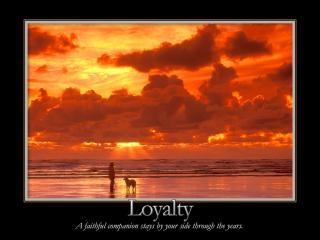 обои Loyalty фото