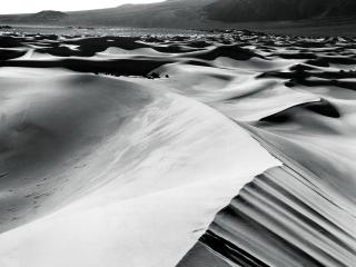 обои Пустынные барханы фото