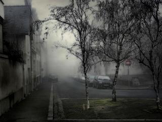 обои Городские задворки фото