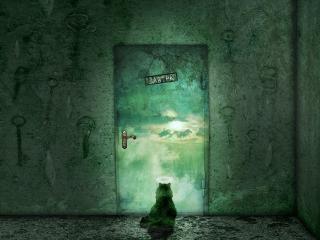 обои Дверь в завтра фото