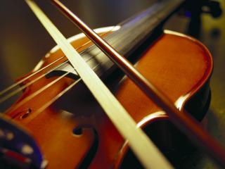 обои Скрипка со смычком фото