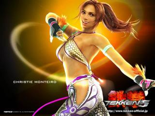 обои Обои из игры Tekken 5 - воительница фото
