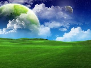 обои Зеленый луг фото