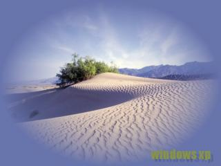 обои для рабочего стола: Пустыня-мечта