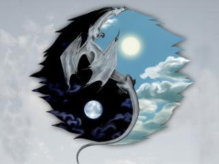 обои Инь-Янь с драконом фото