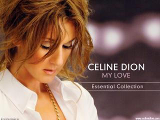 обои Celine Dion - My Love фото