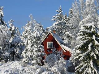 обои Домик в зимнем лесу фото