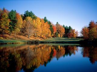обои Autumn Reflections, Vermont фото