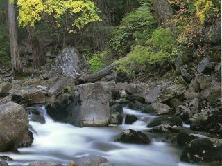 обои Бурный горный ручей, в осеннем лесу фото